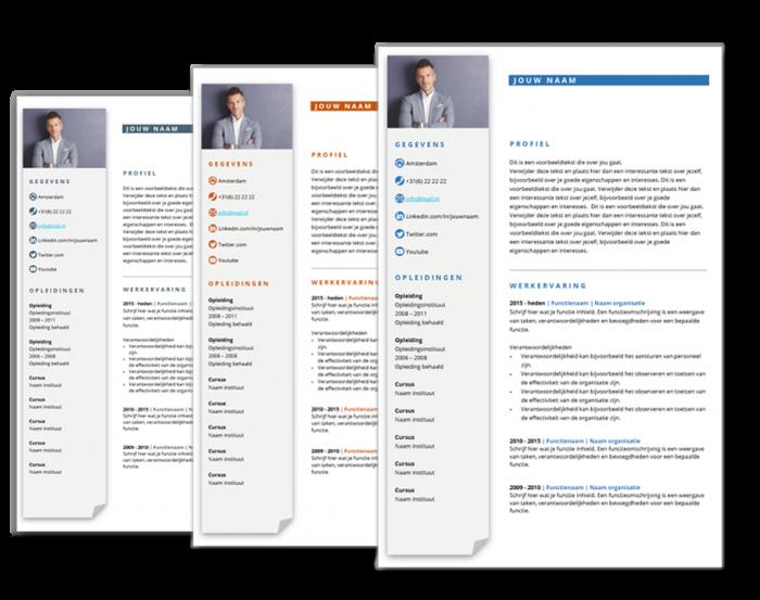 cv template business
