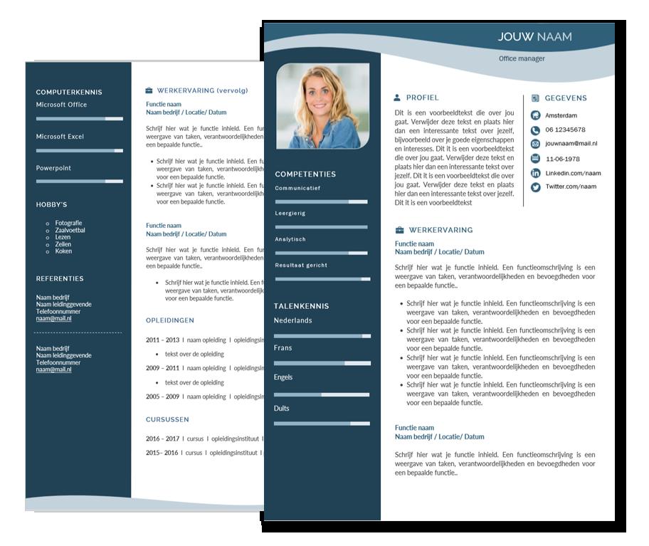cv template  u0026quot modern u0026quot  - download dit cv format
