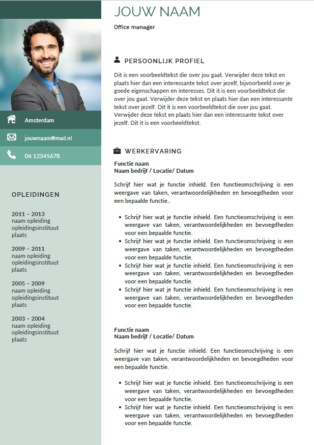 cv voorbeeld template management