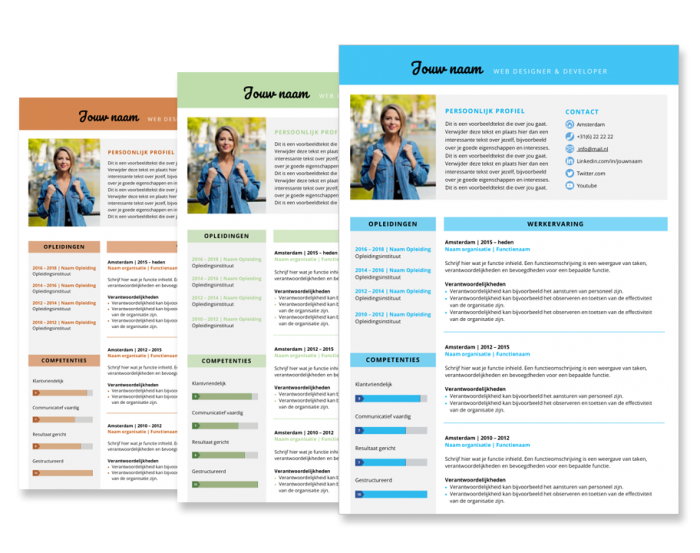 Presentatie cv template smart
