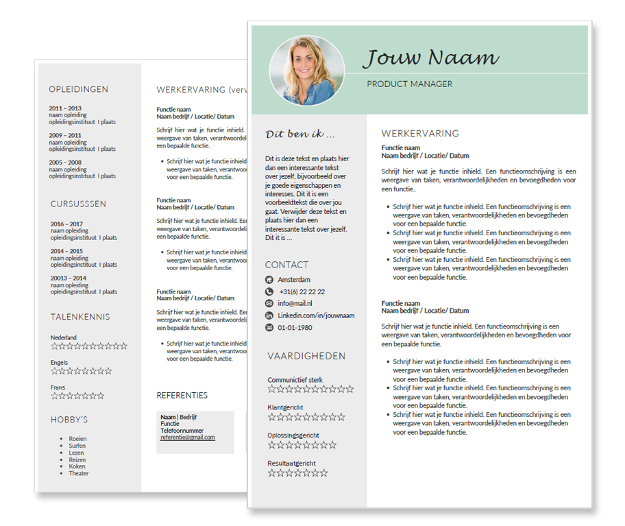 cv template sublime