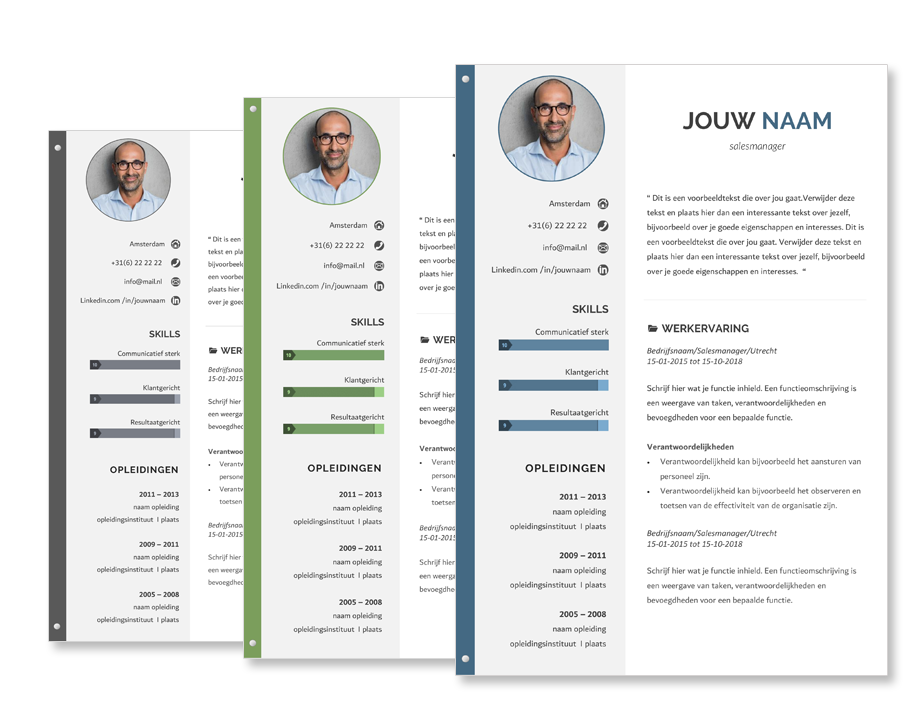 cv template focus - voor een perfect cv